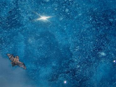 Nachthimmel gemalt